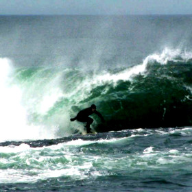 Beach Babes and Surfer Dudes